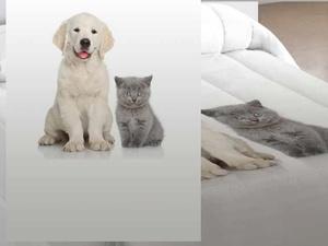 Estor a Medida Pets de EDREXA