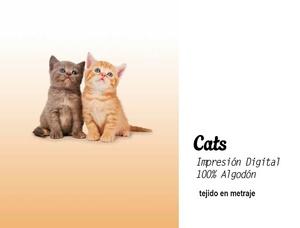 Panot Cats de EDREXA